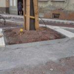 Baumeinfassung quadratisch